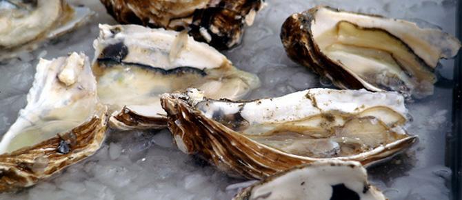 Antipastë, goca deti me gjalpë